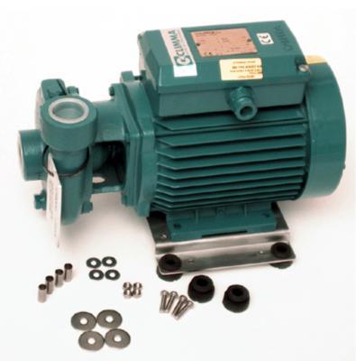 Pompe eau de mer 370Wen 230V 50/60hz Calpéda BCM 20/A